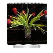 Tulip Mania 18 Shower Curtain