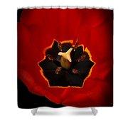 Tulip On Black Shower Curtain
