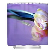 Tulip Reflected Shower Curtain