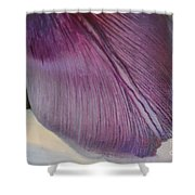 Tulip Time Shower Curtain