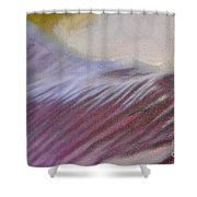 Tulip Time Detail Shower Curtain