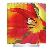 Tulip Warm Tones Shower Curtain