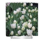 Tulip White Show Flower Butterfly Garden Shower Curtain