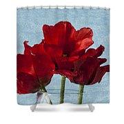 Tulips 1 Shower Curtain