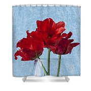 Tulips 2 Shower Curtain