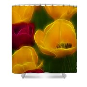 Tulips-6758-fractal Shower Curtain
