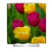 Tulips-6768-fractal Shower Curtain