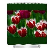 Tulips-6823-fractal Shower Curtain