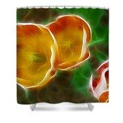 Tulips-6892-fractal Shower Curtain
