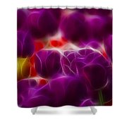 Tulips-6999-fractal Shower Curtain