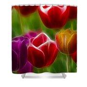 Tulips-7022-fractal Shower Curtain
