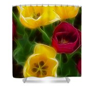 Tulips-7082-fractal Shower Curtain