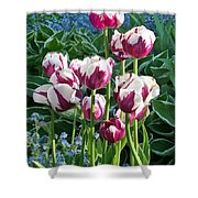 Tulips Among The Forget Me Nots Shower Curtain