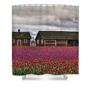 Tulips And Barns Shower Curtain