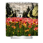 Tulips And Building Shower Curtain