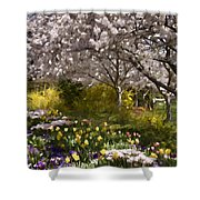 Tulips And Other Spring Flowers At Dallas Arboretum Shower Curtain