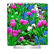 Tulips And Pansies And Grape Hyacinth By Lutheran Cathedral Of Helsinki-finland Shower Curtain