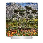 Tulips At Dallas Arboretum V49 Shower Curtain