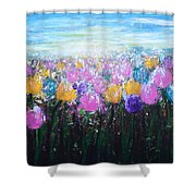 Tulips At Sunrise Shower Curtain