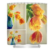 Tulips Collage Shower Curtain