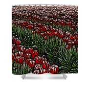 Tulips Fields Are Forever Shower Curtain