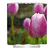 Tulips In Digital Watercolor Shower Curtain