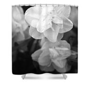 Tulips - Infrared 02 Shower Curtain