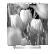 Tulips - Infrared 11 Shower Curtain