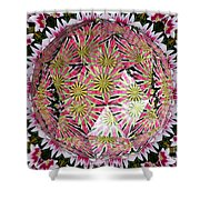 Tulips Kaleidoscope Under Polyhedron Glass Shower Curtain