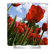 Tulips Leaning Tall Shower Curtain