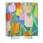 Tulips Multicolor Shower Curtain