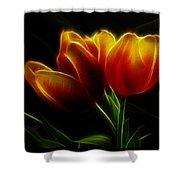 Tulips Of Light Shower Curtain