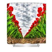 Tulips Part IIi Shower Curtain