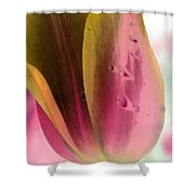 Tulips - Perfect Love - Photopower 2029 Shower Curtain