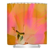Tulips - Perfect Love - Photopower 2033 Shower Curtain