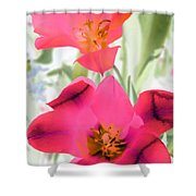 Tulips - Perfect Love - Photopower 2045 Shower Curtain