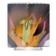 Tulips - Perfect Love - Photopower 2065 Shower Curtain