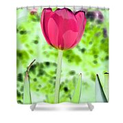 Tulips - Perfect Love - Photopower 2070 Shower Curtain
