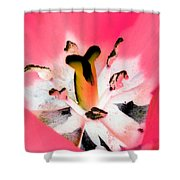 Tulips - Perfect Love - Photopower 2075 Shower Curtain