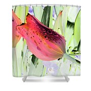 Tulips - Perfect Love - Photopower 2077 Shower Curtain