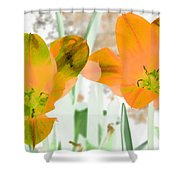 Tulips - Perfect Love - Photopower 2083 Shower Curtain