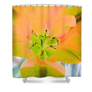 Tulips - Perfect Love - Photopower 2085 Shower Curtain