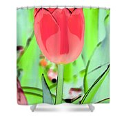 Tulips - Perfect Love - Photopower 2089 Shower Curtain