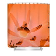Tulips - Perfect Love - Photopower 2103 Shower Curtain
