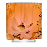 Tulips - Perfect Love - Photopower 2104 Shower Curtain
