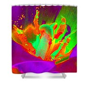 Tulips - Perfect Love - Photopower 2154 Shower Curtain