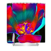 Tulips - Perfect Love - Photopower 2155 Shower Curtain