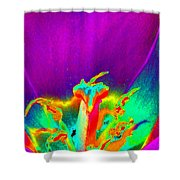 Tulips - Perfect Love - Photopower 2156 Shower Curtain