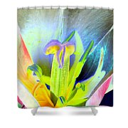 Tulips - Perfect Love - Photopower 2161 Shower Curtain