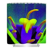 Tulips - Perfect Love - Photopower 2167 Shower Curtain